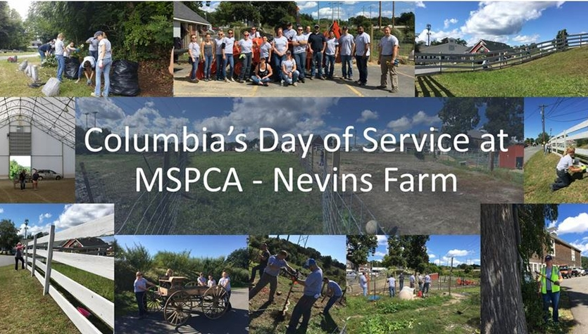 Columbia's Day of Service at the MSPCA at Nevins Farm